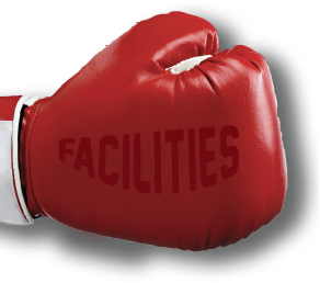 Boxing Gloves - Boxing, MMA, Kung Fu and self defense Classes